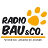 RMC Radio Bau