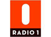 VRT Radio 1 Brussels